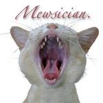 Mewsician